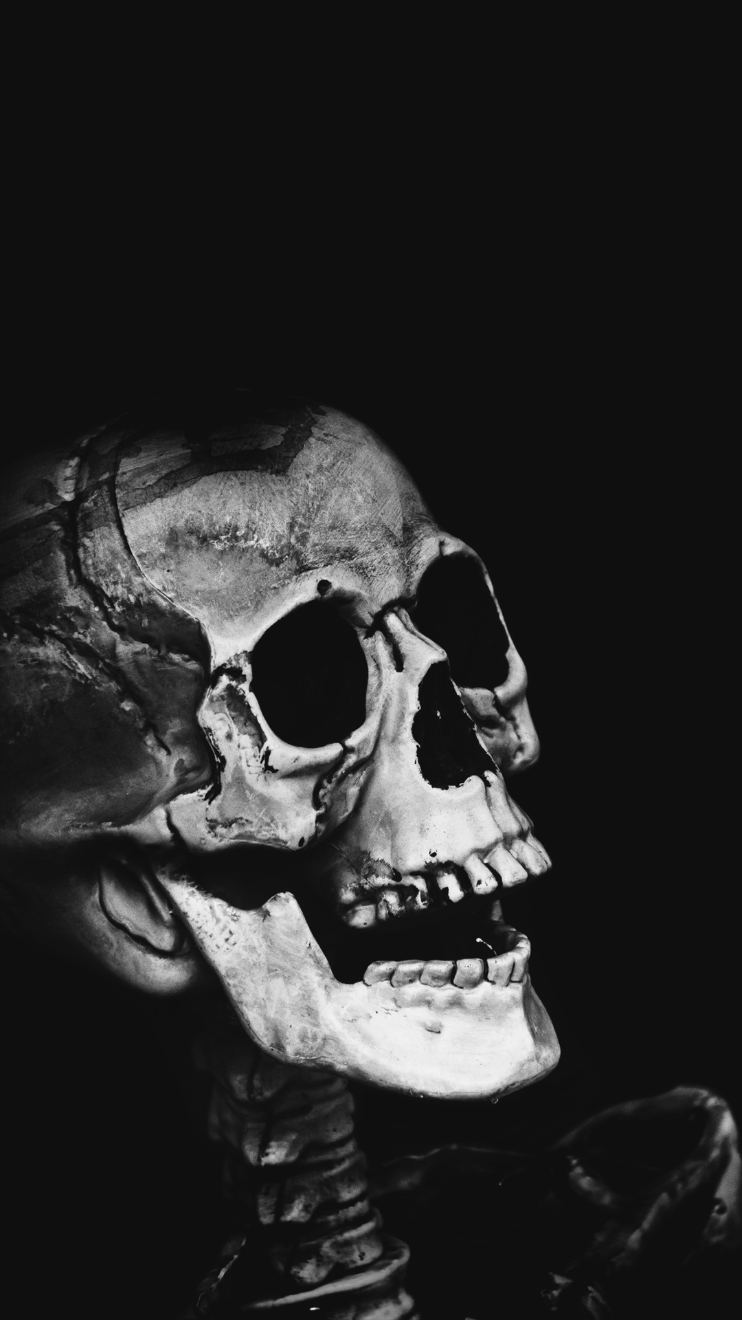 pirate skull hd wallpaper for your android phone