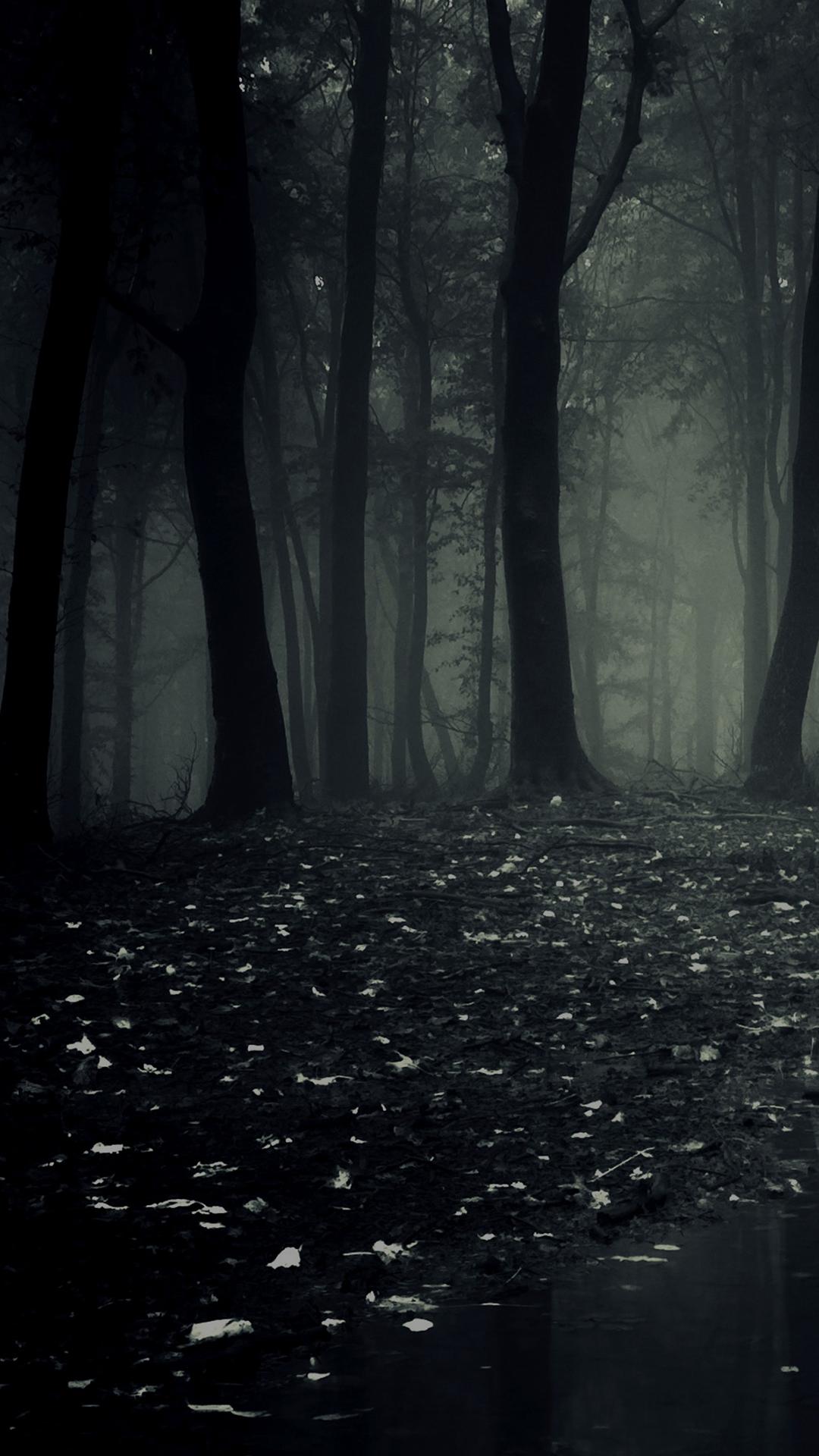 Dark Forest Phone Wallpaper
